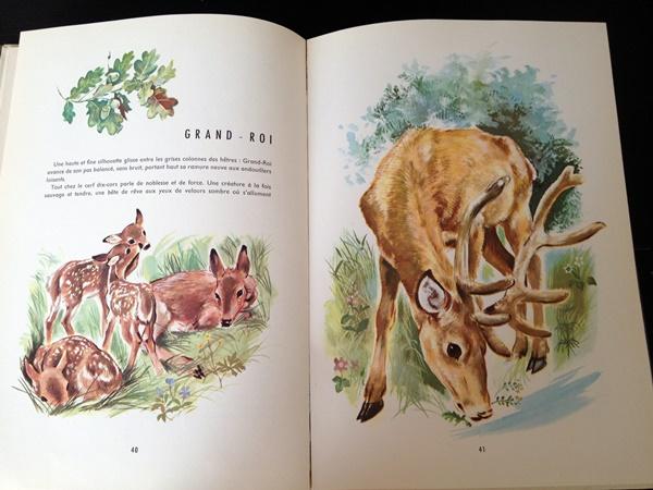 La fôret et ses bêtes (2)