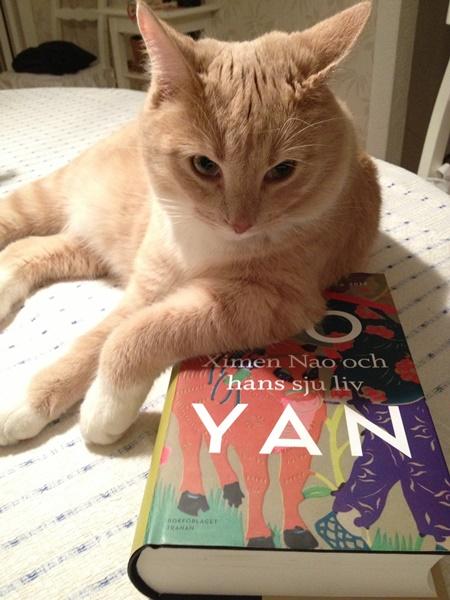 Ximen Nao och hans sju liv