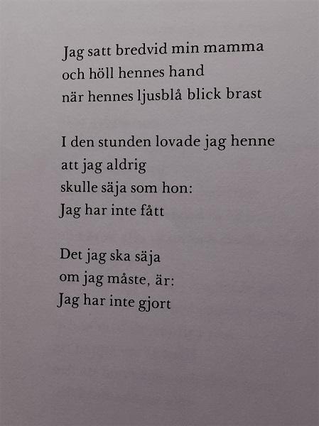 Ur Århundradets kärlekssaga av Märta Tikkanen